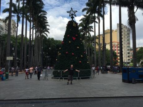 Martin am Weihnachtsbaum